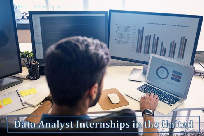 Data Analyst Internships in the United States