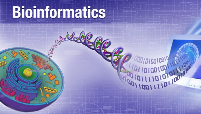 Best Bioinformatics Internship Opportunities, 2019