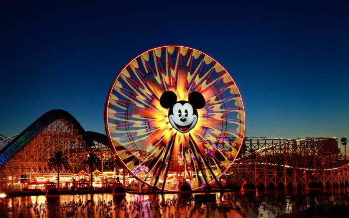 Disney College Internships in the United States, 2019