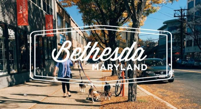 Best Internship Opportunities in Bethesda, 2019
