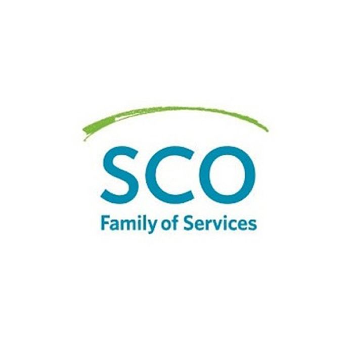 SCO Internships in the United States, 2019
