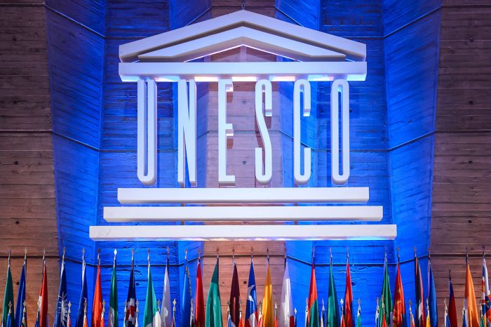 UNESCO Internship Opportunity 2019