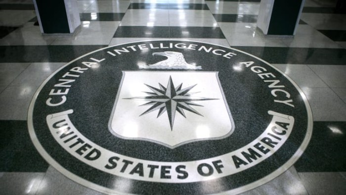 CIA Paid Internship