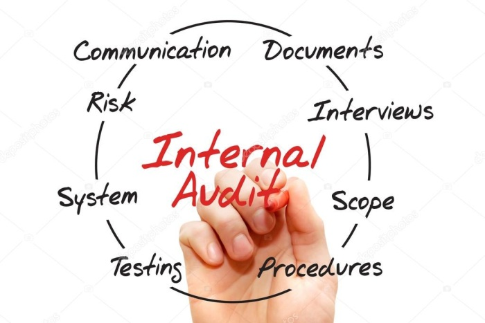 Internal Audit Internships