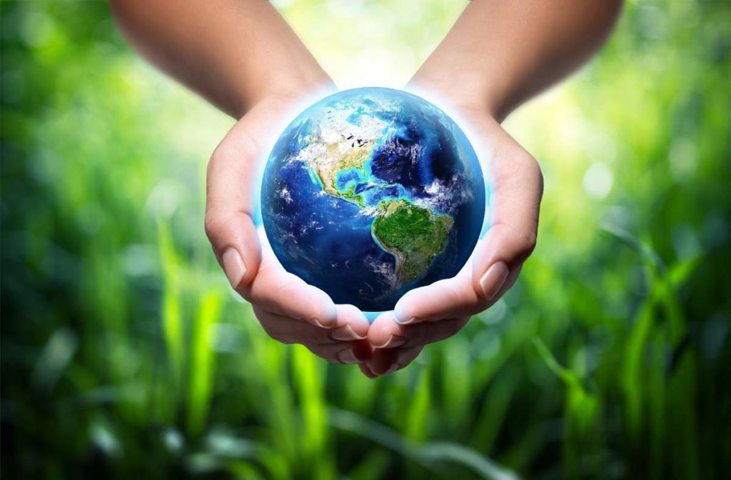 Top Ten Environmental Internships