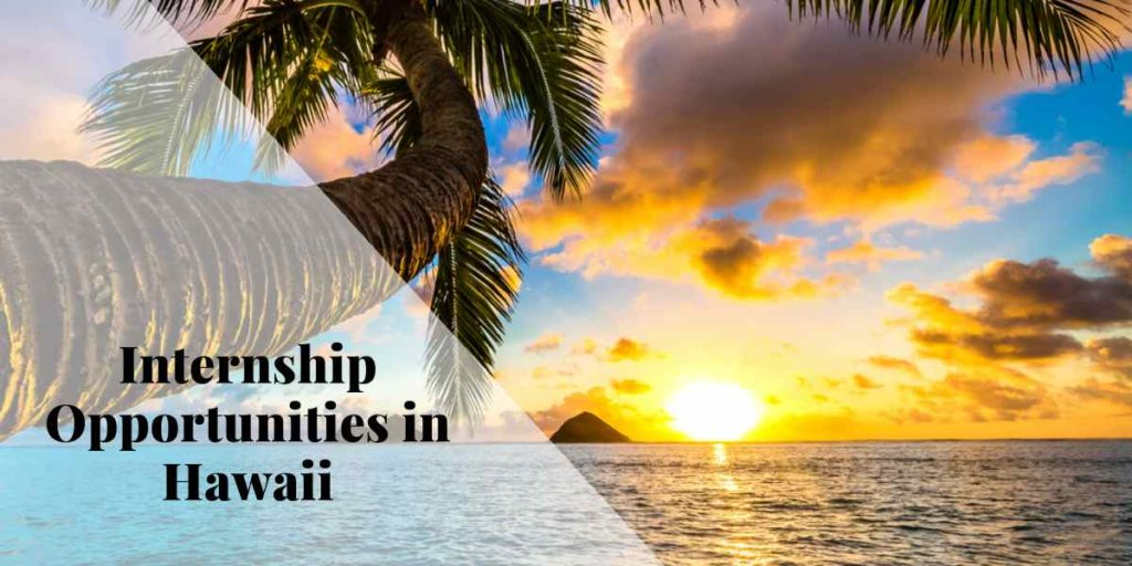 Internship Opportunity in Hawaii