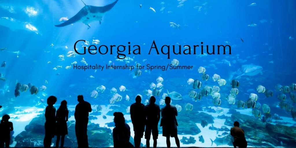Georgia Aquarium Hospitality Internship