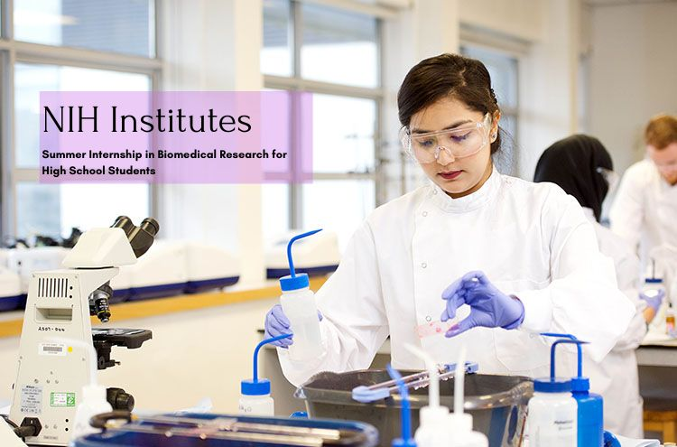 Chemistry Summer Internships 2020.Nih Institutes Internships 2019 2020 Big Internships