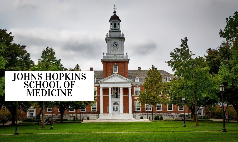 Summer Internship at Johns Hopkins School of Medicine