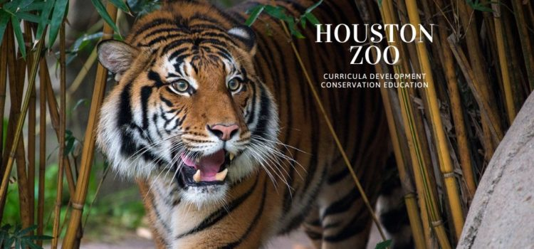 Houston Zoo Curricula Development Conservation Education