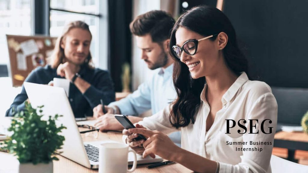 PSEG Summer Business Internship