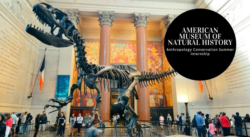 American Museum of Natural History Anthropology Conservation Summer Internship